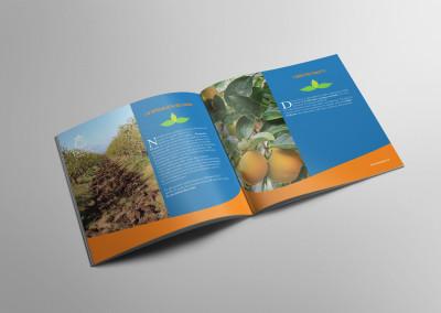 Brochure aziendale rilegata