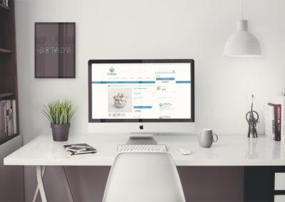 Checkout_Paypal e-commerce  magento 2