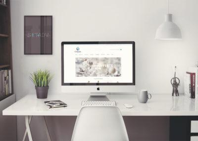 Homepage e-comerce magento 2
